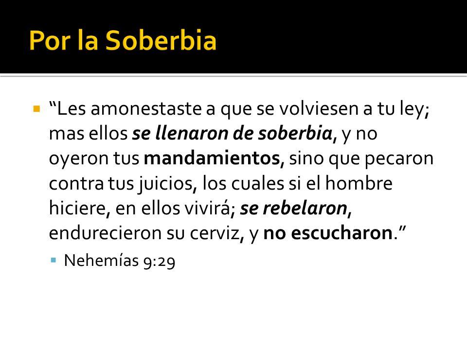  Les amonestaste a que se volviesen a tu ley; mas ellos se llenaron de soberbia, y no oyeron tus mandamientos, sino que pecaron contra tus juicios, los cuales si el hombre hiciere, en ellos vivirá; se rebelaron, endurecieron su cerviz, y no escucharon.  Nehemías 9:29