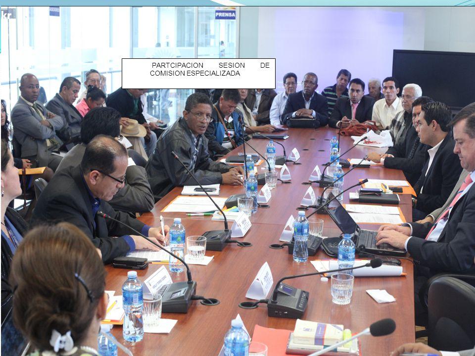 PARTCIPACION SESION DE COMISION ESPECIALIZADA