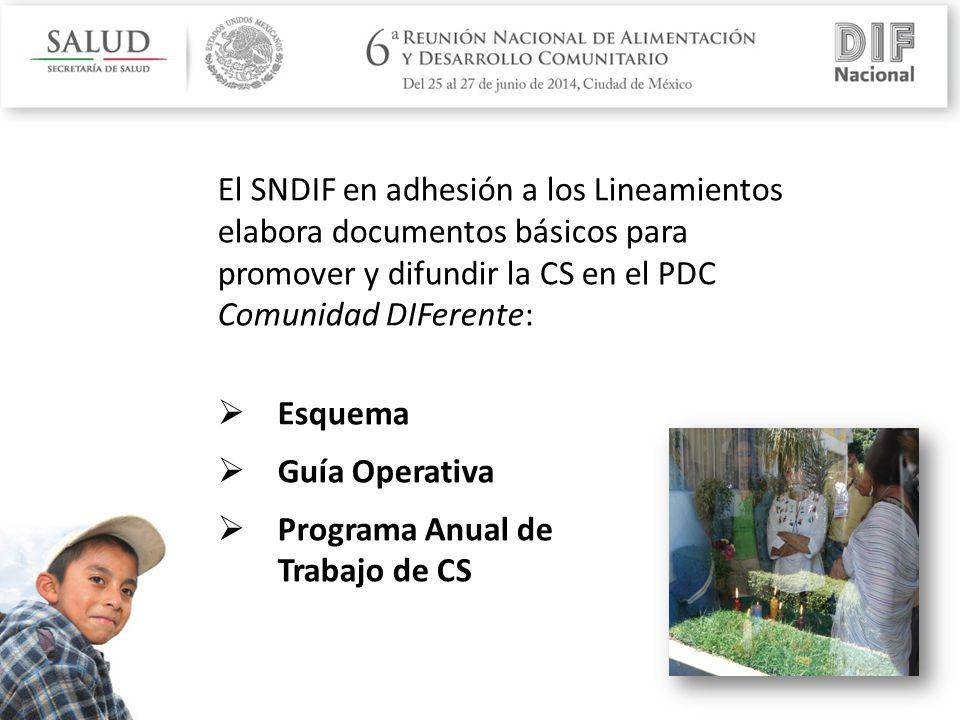El SNDIF en adhesión a los Lineamientos elabora documentos básicos para promover y difundir la CS en el PDC Comunidad DIFerente:  Esquema  Guía Operativa  Programa Anual de Trabajo de CS