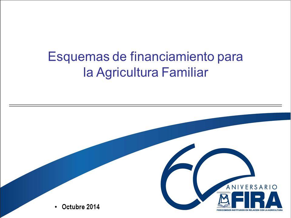 Octubre 2014 Esquemas de financiamiento para la Agricultura Familiar