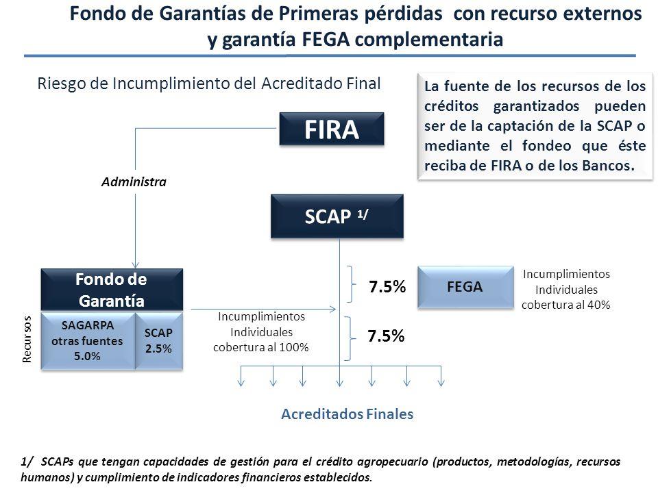Fondo de Garantías de Primeras pérdidas con recurso externos y garantía FEGA complementaria FIRA Fondo de Garantía SAGARPA otras fuentes 5.0% SAGARPA otras fuentes 5.0% SCAP 2.5% SCAP 2.5% Administra SCAP 1/ Incumplimientos Individuales cobertura al 100% 7.5% Acreditados Finales Recursos 1/ SCAPs que tengan capacidades de gestión para el crédito agropecuario (productos, metodologías, recursos humanos) y cumplimiento de indicadores financieros establecidos.