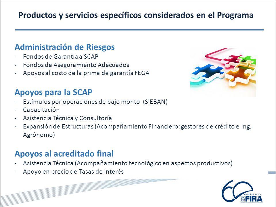 11 Productos y servicios específicos considerados en el Programa Fondos de Garantía Fondos de Aseguramiento Administración de Riesgos -Fondos de Garantía a SCAP -Fondos de Aseguramiento Adecuados -Apoyos al costo de la prima de garantía FEGA Apoyos para la SCAP -Estímulos por operaciones de bajo monto (SIEBAN) -Capacitación -Asistencia Técnica y Consultoría -Expansión de Estructuras (Acompañamiento Financiero: gestores de crédito e Ing.