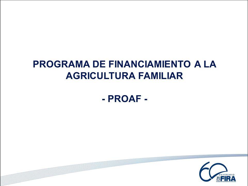 2 PROGRAMA DE FINANCIAMIENTO A LA AGRICULTURA FAMILIAR - PROAF -