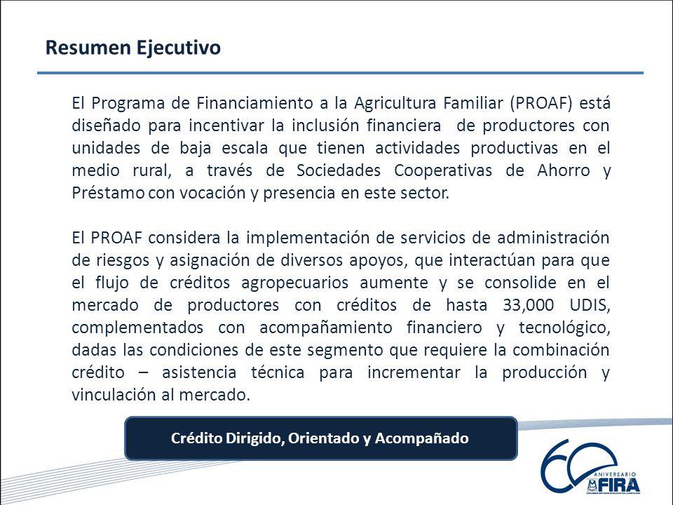 3 Resumen Ejecutivo El Programa de Financiamiento a la Agricultura Familiar (PROAF) está diseñado para incentivar la inclusión financiera de productores con unidades de baja escala que tienen actividades productivas en el medio rural, a través de Sociedades Cooperativas de Ahorro y Préstamo con vocación y presencia en este sector.