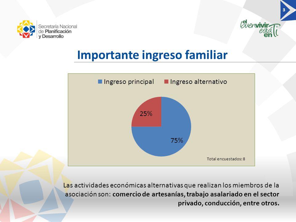 Importante ingreso familiar 3 Total encuestados: 8 Las actividades económicas alternativas que realizan los miembros de la asociación son: comercio de artesanías, trabajo asalariado en el sector privado, conducción, entre otros.