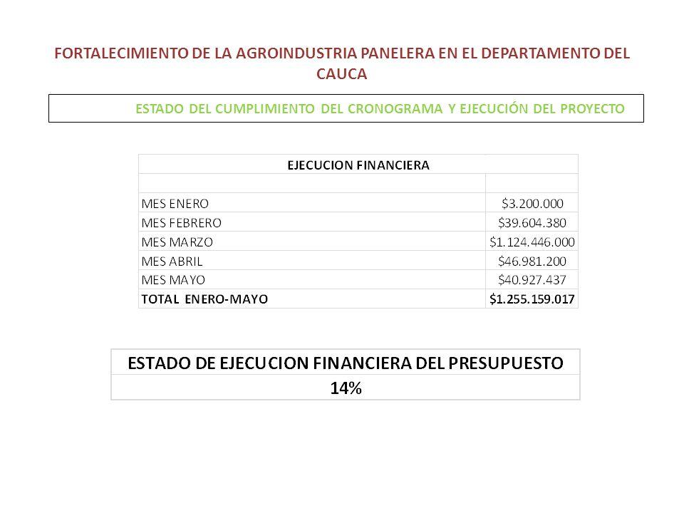 FORTALECIMIENTO DE LA AGROINDUSTRIA PANELERA EN EL DEPARTAMENTO DEL CAUCA ESTADO DEL CUMPLIMIENTO DEL CRONOGRAMA Y EJECUCIÓN DEL PROYECTO