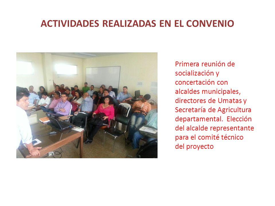 ACTIVIDADES REALIZADAS EN EL CONVENIO Primera reunión de socialización y concertación con alcaldes municipales, directores de Umatas y Secretaría de Agricultura departamental.