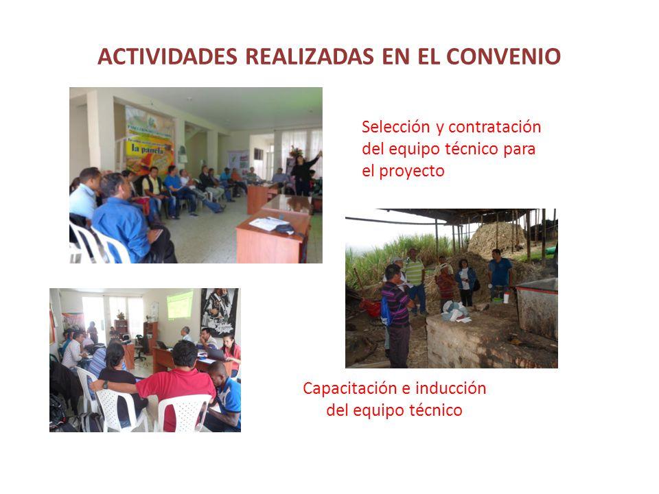 ACTIVIDADES REALIZADAS EN EL CONVENIO Selección y contratación del equipo técnico para el proyecto Capacitación e inducción del equipo técnico