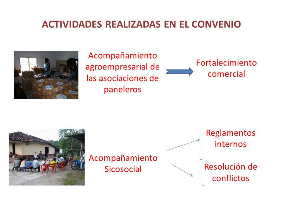 ACTIVIDADES REALIZADAS EN EL CONVENIO Acompañamiento agroempresarial de las asociaciones de paneleros Acompañamiento Sicosocial Fortalecimiento comercial Reglamentos internos Resolución de conflictos