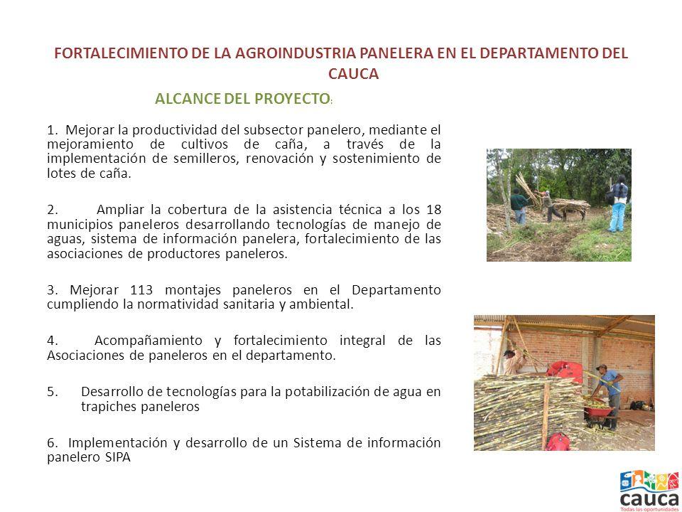 FORTALECIMIENTO DE LA AGROINDUSTRIA PANELERA EN EL DEPARTAMENTO DEL CAUCA ALCANCE DEL PROYECTO : 1.