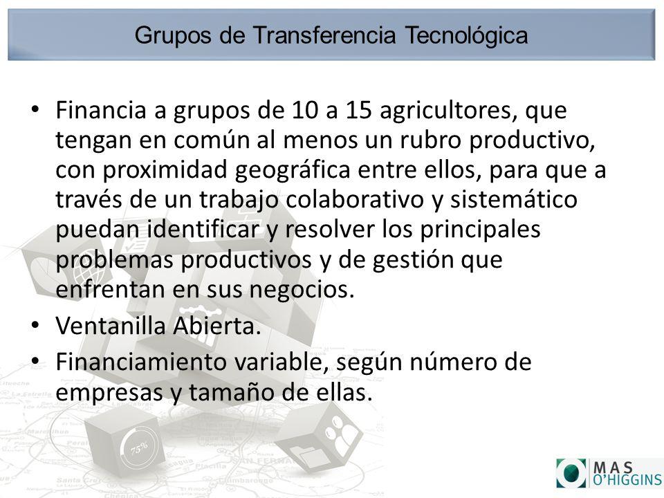 Grupos de Transferencia Tecnológica Financia a grupos de 10 a 15 agricultores, que tengan en común al menos un rubro productivo, con proximidad geográfica entre ellos, para que a través de un trabajo colaborativo y sistemático puedan identificar y resolver los principales problemas productivos y de gestión que enfrentan en sus negocios.