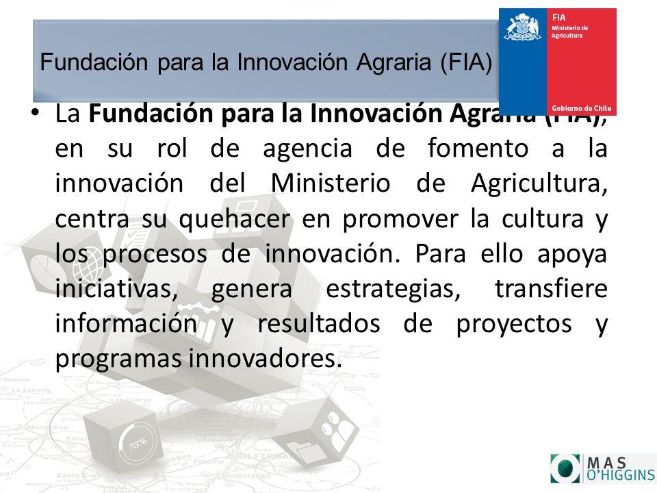 Fundación para la Innovación Agraria (FIA) La Fundación para la Innovación Agraria (FIA), en su rol de agencia de fomento a la innovación del Ministerio de Agricultura, centra su quehacer en promover la cultura y los procesos de innovación.