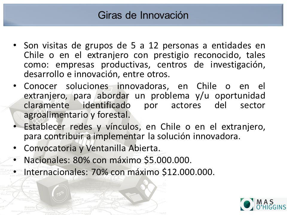Giras de Innovación Son visitas de grupos de 5 a 12 personas a entidades en Chile o en el extranjero con prestigio reconocido, tales como: empresas productivas, centros de investigación, desarrollo e innovación, entre otros.