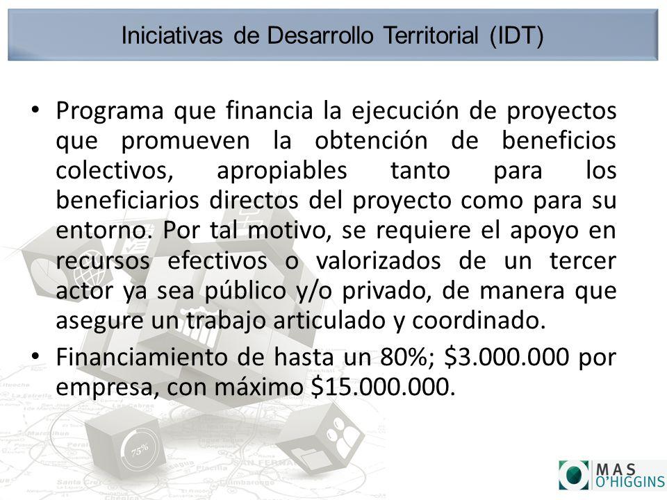 Iniciativas de Desarrollo Territorial (IDT) Programa que financia la ejecución de proyectos que promueven la obtención de beneficios colectivos, apropiables tanto para los beneficiarios directos del proyecto como para su entorno.