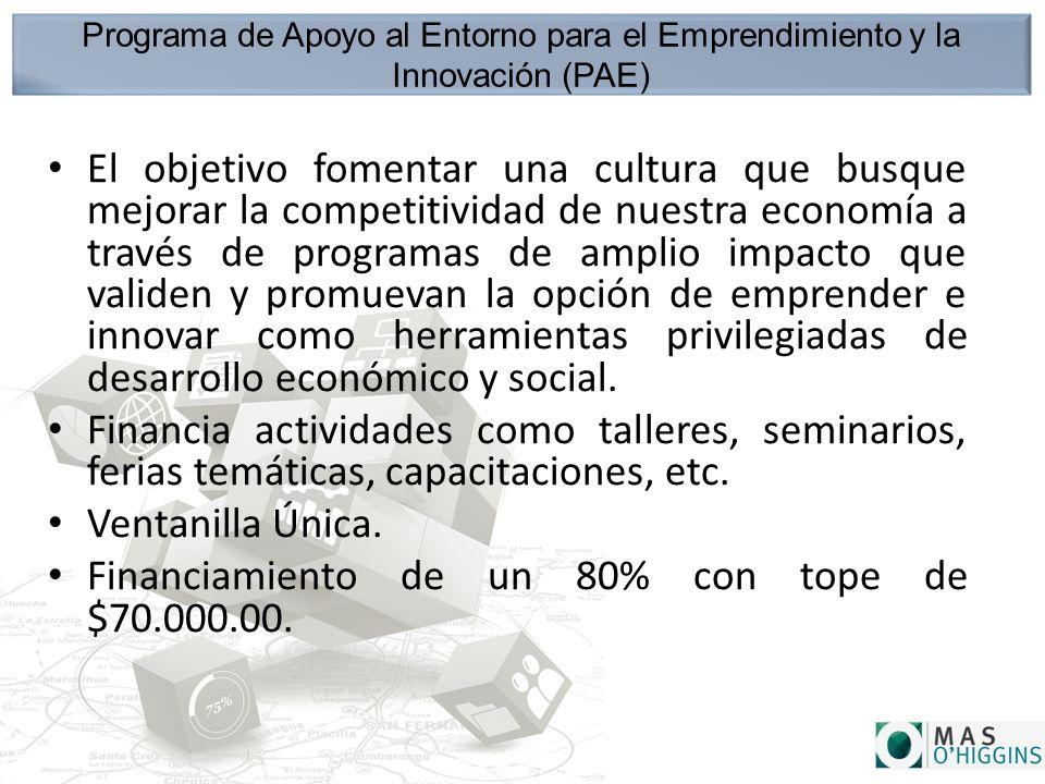 Programa de Apoyo al Entorno para el Emprendimiento y la Innovación (PAE) El objetivo fomentar una cultura que busque mejorar la competitividad de nuestra economía a través de programas de amplio impacto que validen y promuevan la opción de emprender e innovar como herramientas privilegiadas de desarrollo económico y social.