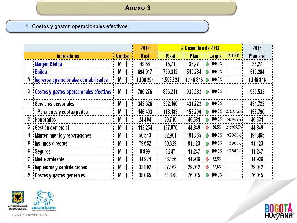 28 Anexo 3 1. Costos y gastos operacionales efectivos
