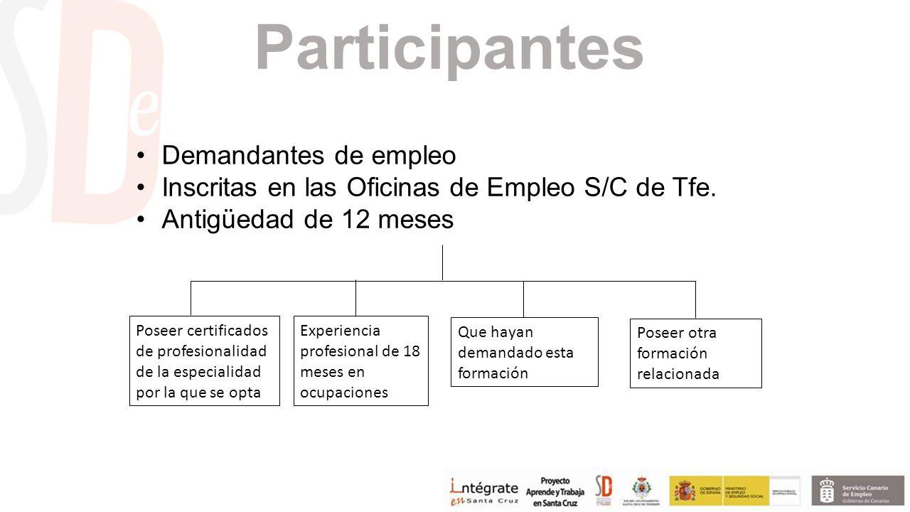 Participantes Demandantes de empleo Inscritas en las Oficinas de Empleo S/C de Tfe.