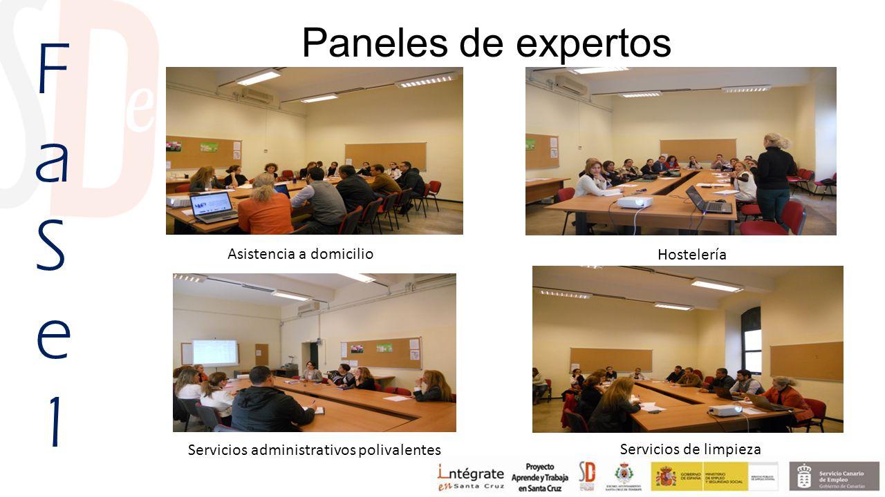 Hostelería Servicios de limpieza Paneles de expertos FaSe1FaSe1 Servicios administrativos polivalentes Asistencia a domicilio