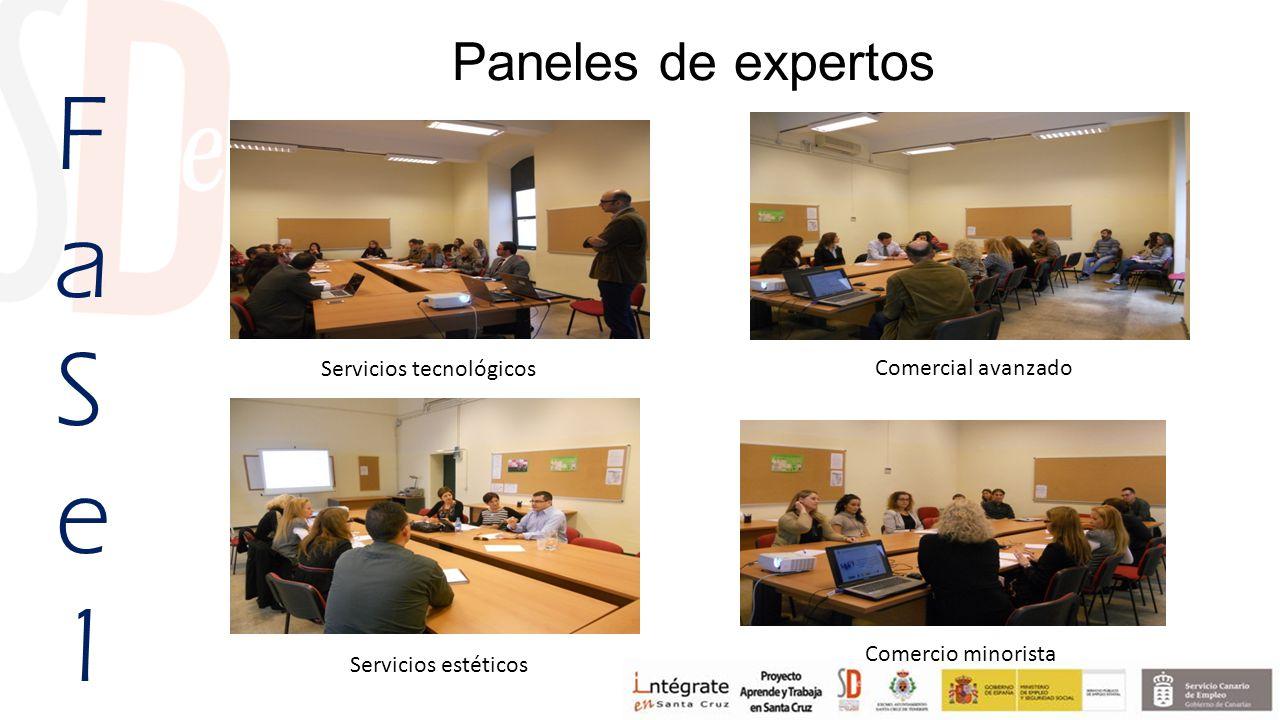 Paneles de expertos FaSe1FaSe1 Servicios tecnológicos Comercial avanzado Servicios estéticos Comercio minorista