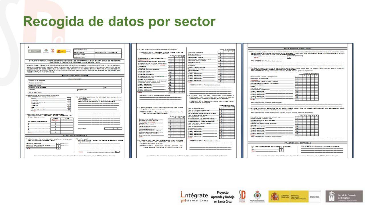 Recogida de datos por sector