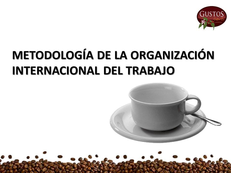 METODOLOGÍA DE LA ORGANIZACIÓN INTERNACIONAL DEL TRABAJO