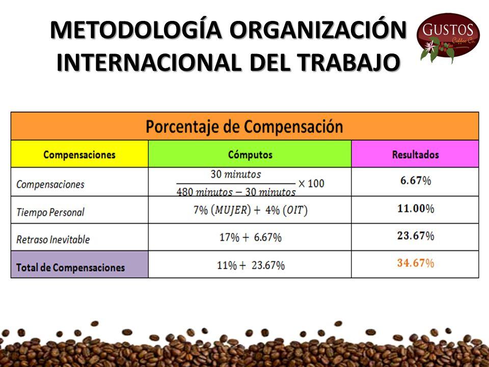 METODOLOGÍA ORGANIZACIÓN INTERNACIONAL DEL TRABAJO