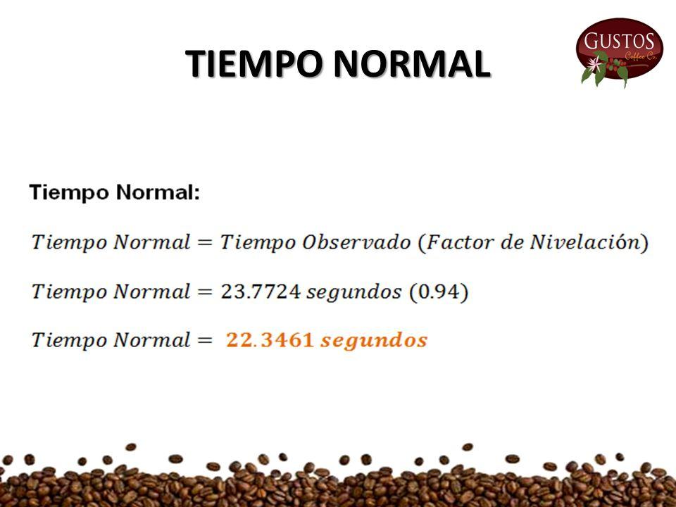 TIEMPO NORMAL
