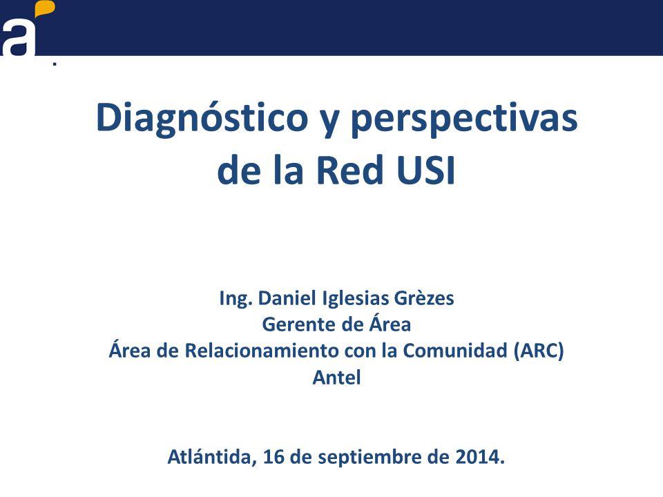 Diagnóstico y perspectivas de la Red USI Ing.