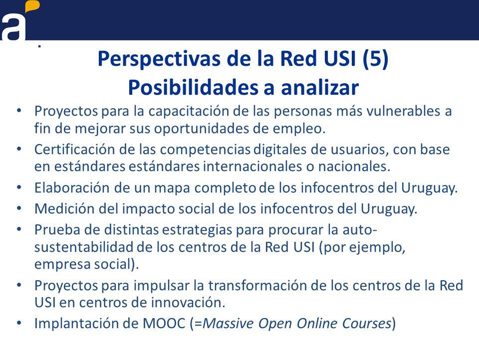 Perspectivas de la Red USI (5) Posibilidades a analizar Proyectos para la capacitación de las personas más vulnerables a fin de mejorar sus oportunidades de empleo.