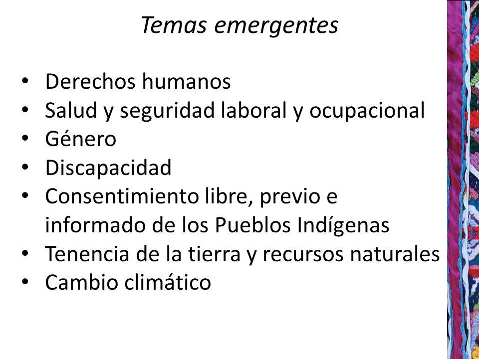 Temas emergentes Derechos humanos Salud y seguridad laboral y ocupacional Género Discapacidad Consentimiento libre, previo e informado de los Pueblos Indígenas Tenencia de la tierra y recursos naturales Cambio climático