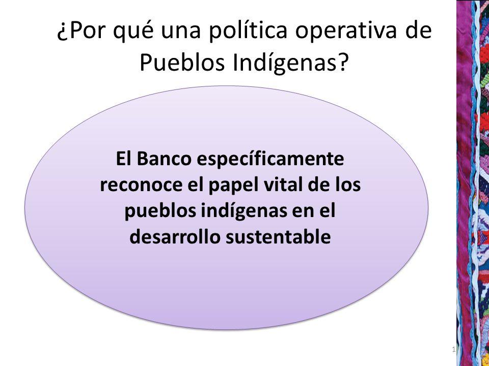 ¿Por qué una política operativa de Pueblos Indígenas.