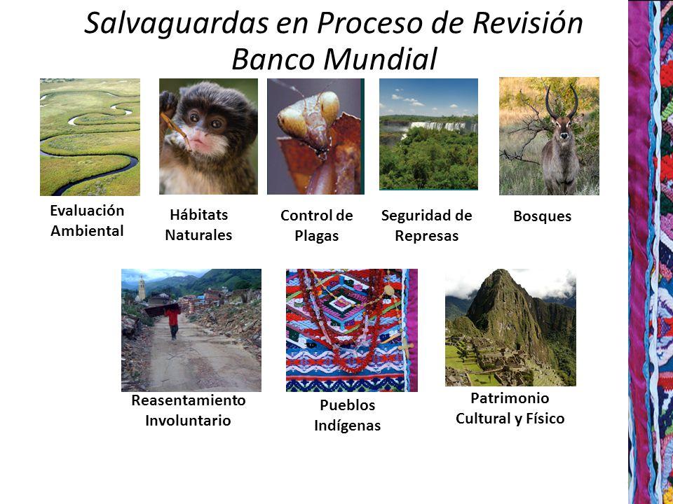 8 Evaluación Ambiental Salvaguardas en Proceso de Revisión Banco Mundial Hábitats Naturales Control de Plagas Seguridad de Represas Bosques Reasentamiento Involuntario Pueblos Indígenas Patrimonio Cultural y Físico
