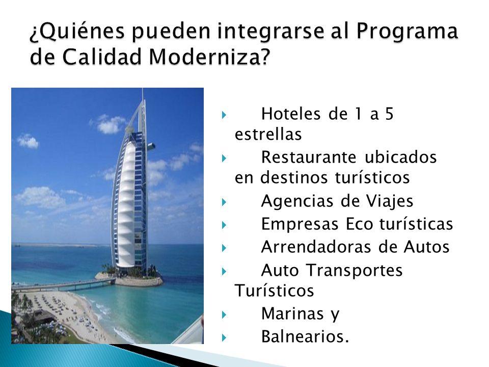  Hoteles de 1 a 5 estrellas  Restaurante ubicados en destinos turísticos  Agencias de Viajes  Empresas Eco turísticas  Arrendadoras de Autos  Auto Transportes Turísticos  Marinas y  Balnearios.