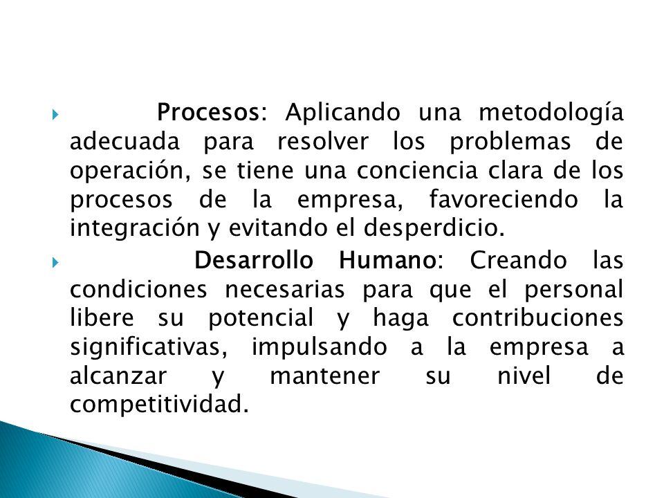  Procesos: Aplicando una metodología adecuada para resolver los problemas de operación, se tiene una conciencia clara de los procesos de la empresa, favoreciendo la integración y evitando el desperdicio.