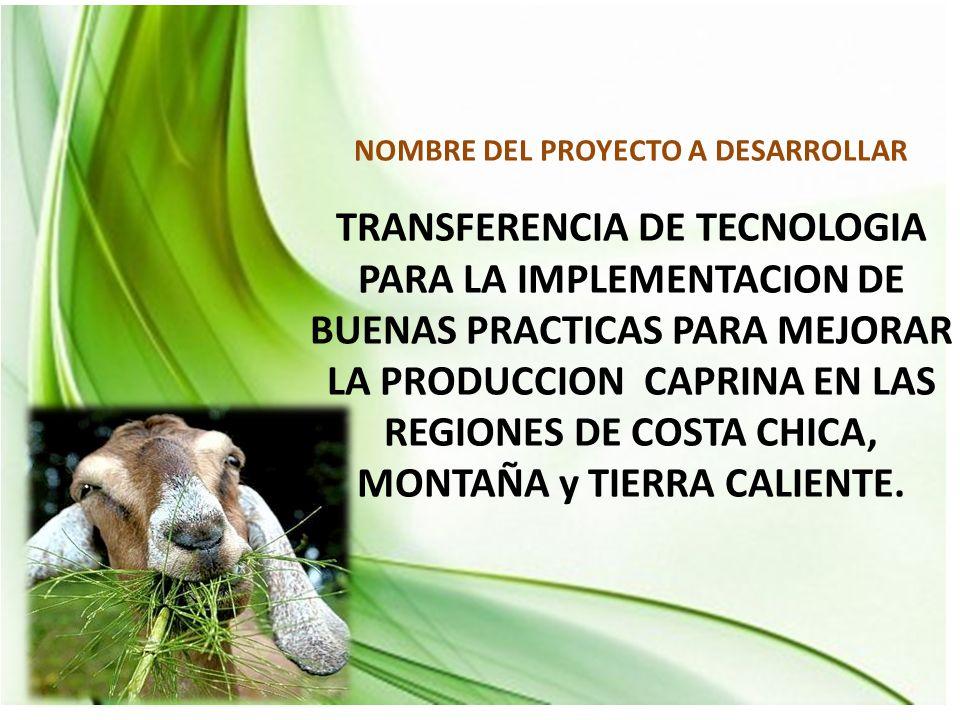 NOMBRE DEL PROYECTO A DESARROLLAR TRANSFERENCIA DE TECNOLOGIA PARA LA IMPLEMENTACION DE BUENAS PRACTICAS PARA MEJORAR LA PRODUCCION CAPRINA EN LAS REGIONES DE COSTA CHICA, MONTAÑA y TIERRA CALIENTE.