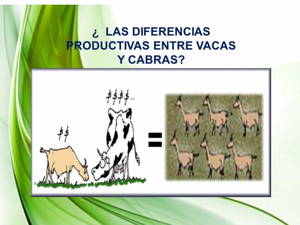¿ LAS DIFERENCIAS PRODUCTIVAS ENTRE VACAS Y CABRAS