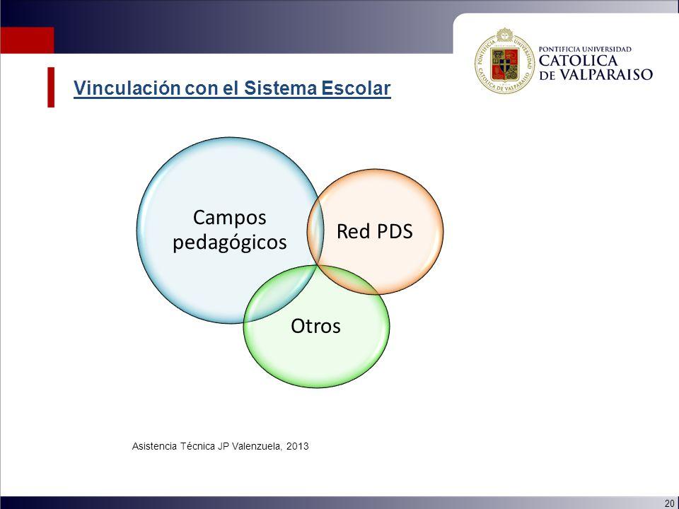 20 Campos pedagógicos Otros Red PDS Asistencia Técnica JP Valenzuela, 2013 Vinculación con el Sistema Escolar
