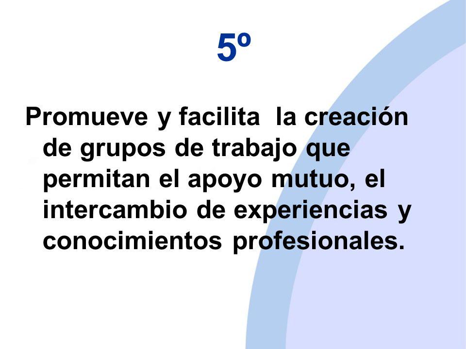 5º Promueve y facilita la creación de grupos de trabajo que permitan el apoyo mutuo, el intercambio de experiencias y conocimientos profesionales.
