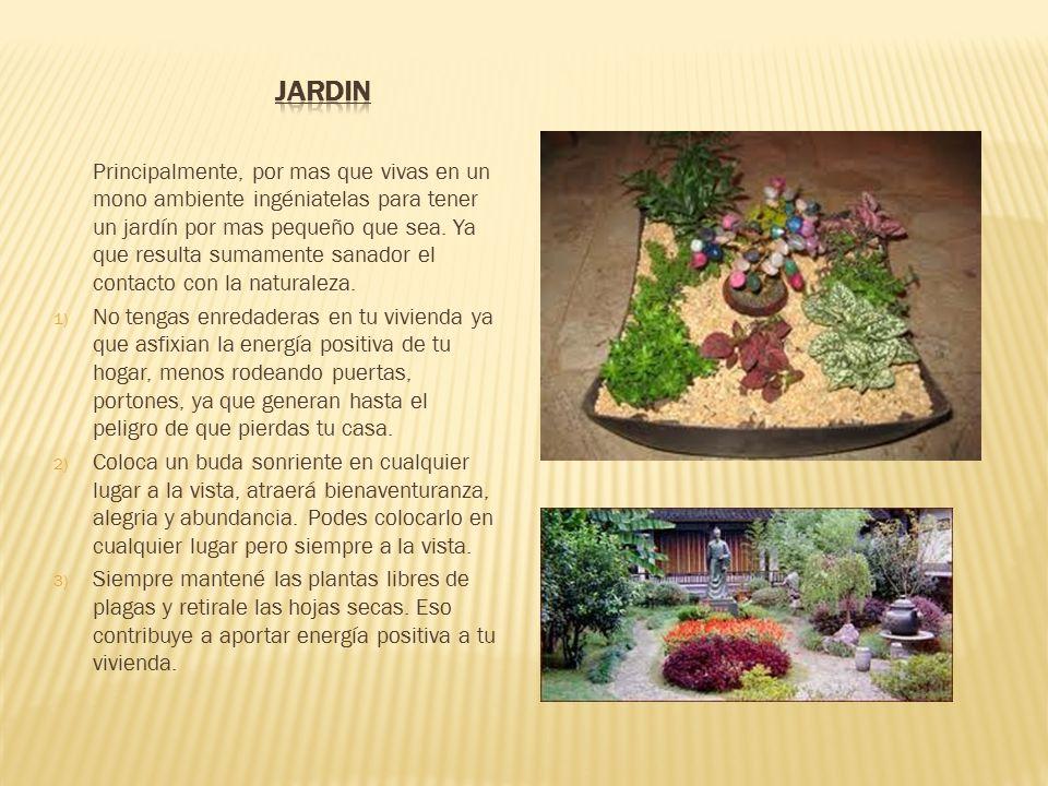 Principalmente, por mas que vivas en un mono ambiente ingéniatelas para tener un jardín por mas pequeño que sea.
