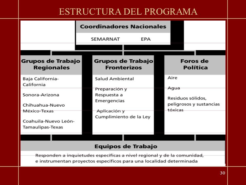 30 ESTRUCTURA DEL PROGRAMA