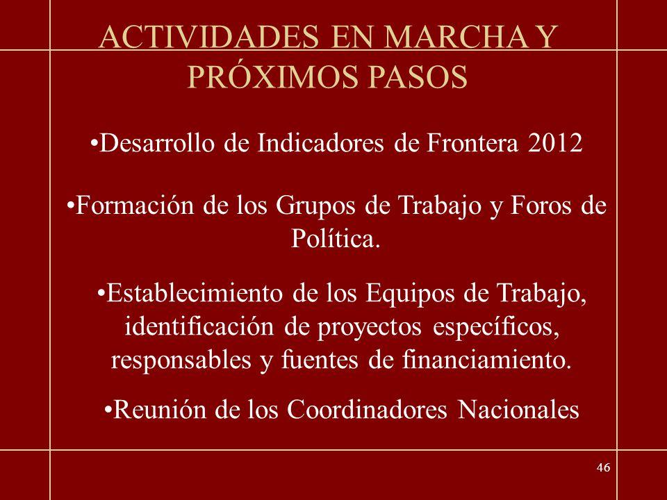 46 ACTIVIDADES EN MARCHA Y PRÓXIMOS PASOS Desarrollo de Indicadores de Frontera 2012 Formación de los Grupos de Trabajo y Foros de Política.