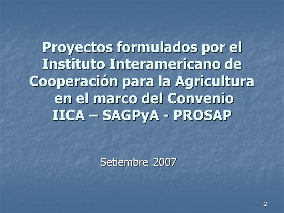 2 Proyectos formulados por el Instituto Interamericano de Cooperación para la Agricultura en el marco del Convenio IICA – SAGPyA - PROSAP Setiembre 2007
