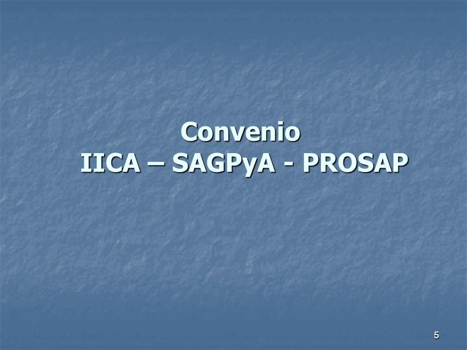 5 Convenio IICA – SAGPyA - PROSAP