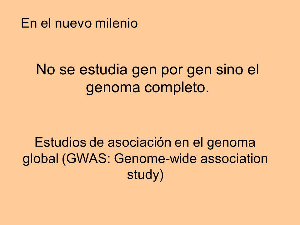 En el nuevo milenio No se estudia gen por gen sino el genoma completo.