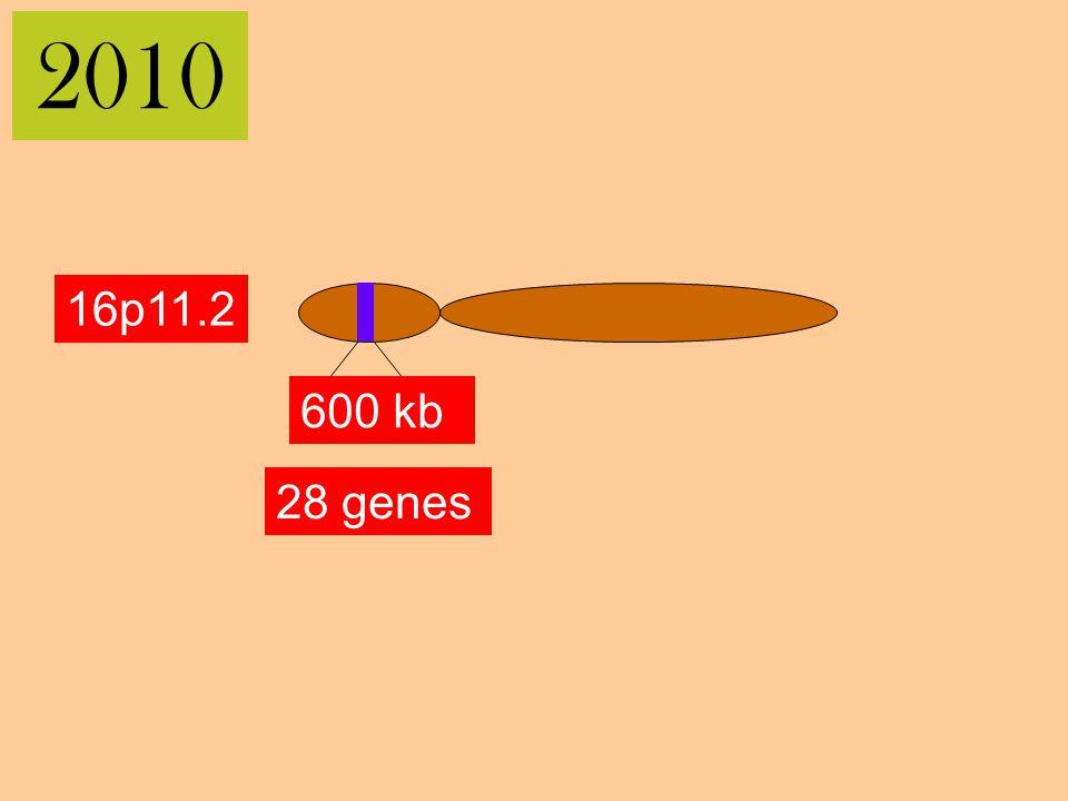 2010 16p11.2 600 kb 28 genes