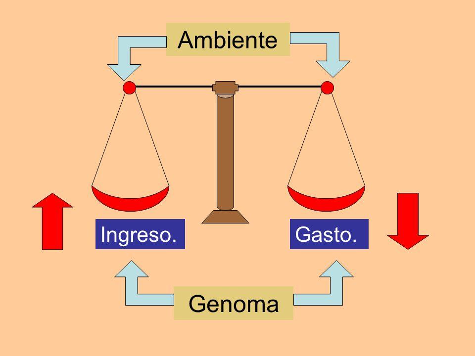 Ingreso.Gasto. Ambiente Genoma