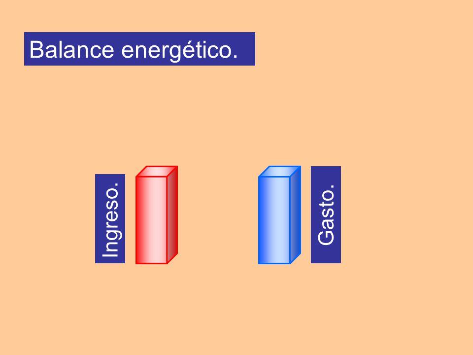 Ingreso. Gasto. Balance energético.