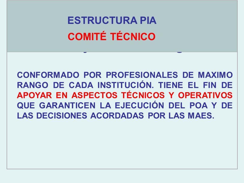 Objetivos estratégicos ESTRUCTURA PIA COMITÉ TÉCNICO CONFORMADO POR PROFESIONALES DE MAXIMO RANGO DE CADA INSTITUCIÓN.