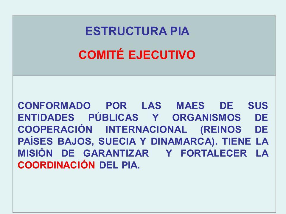 OBJETIVOS ESTRATÉGICOS COMITÉ EJECUTIVO CONFORMADO POR LAS MAES DE SUS ENTIDADES PÚBLICAS Y ORGANISMOS DE COOPERACIÓN INTERNACIONAL (REINOS DE PAÍSES BAJOS, SUECIA Y DINAMARCA).