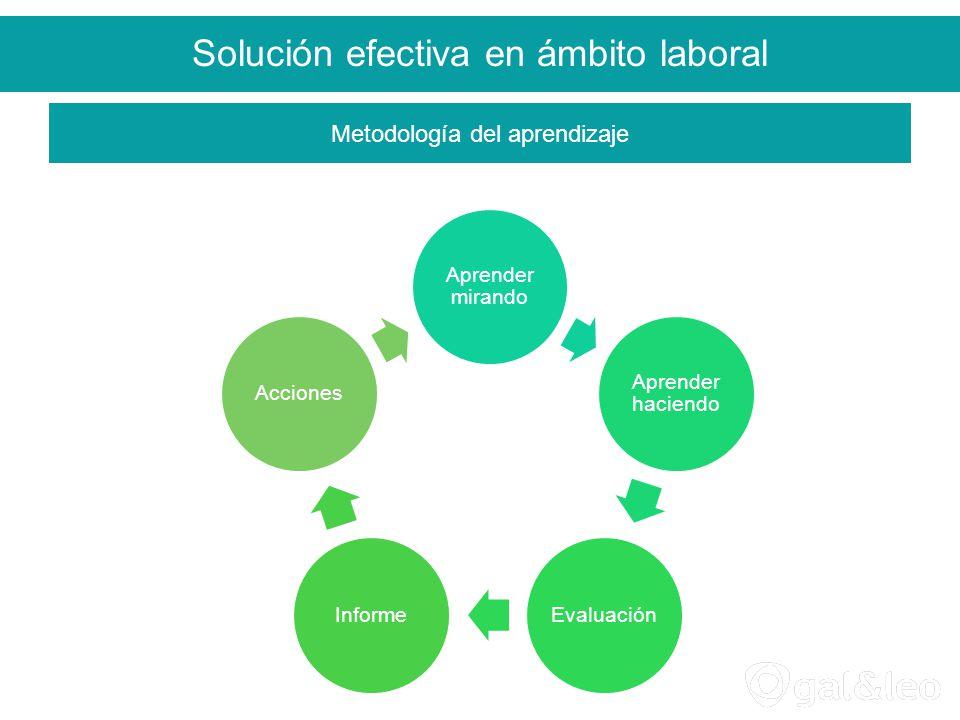 Solución efectiva en ámbito laboral Aprender mirando Aprender haciendo EvaluaciónInformeAcciones Metodología del aprendizaje